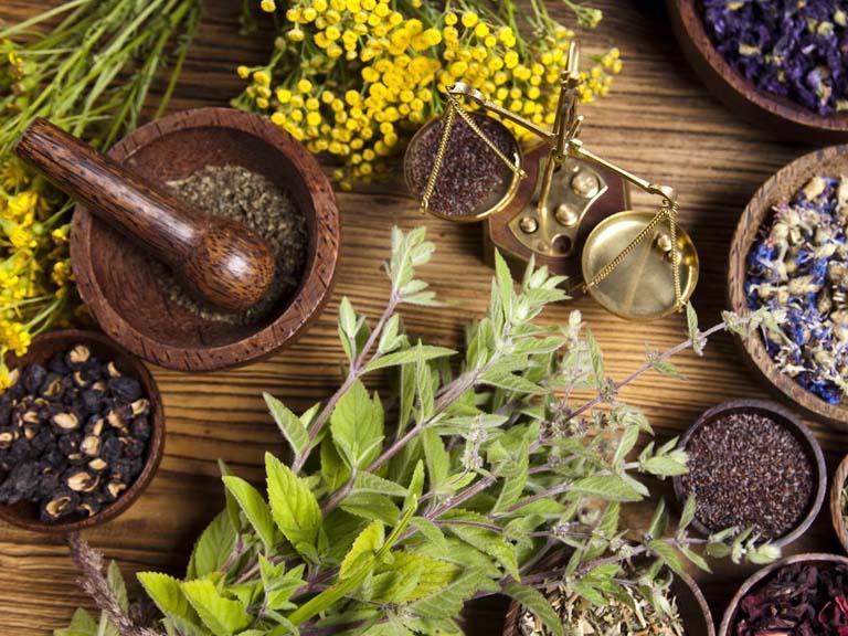 Bitkilerle Tedavi (Herbalizm, Fitoterapi)
